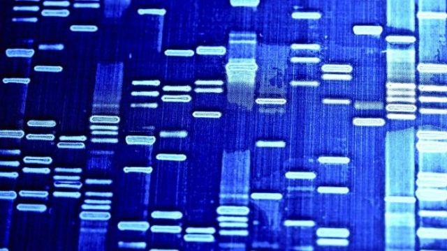 23/24 MARZO ROMA – CORSO INTENSIVO IN GENETICA FORENSE