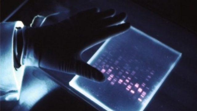 Caso Andrea Ghira, la genetista: «Ecco com'è stato identificato»